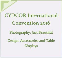 Cydcor 2016